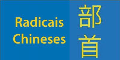 Radicais chineses: Uma Introdução