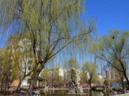 Tempo lindo em Chengde